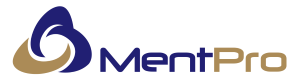 Mentpro – Capacity and Rightsizing Specialists